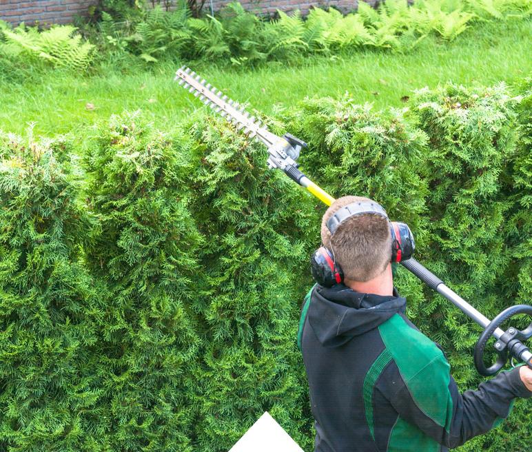 Gartenpflege München sicherheitsdienst süd gartenpflege